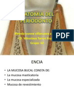 Anatomia Del Period on To Brenda Ivoone