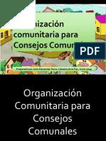 organizacincomunitariaparaconsejoscomunales-100402091346-phpapp01