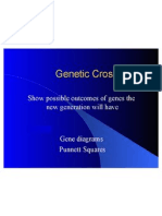 Presentation 1 Genetic Crosses