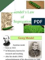Mendels Law of Segregation