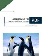Gerencia Proyectos_Wilson Rodríguez_2011