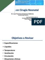 Anestesia Neonatal. 2010. Anzorena