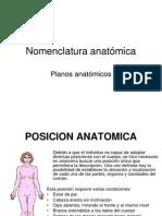nomenclatura-anatmica
