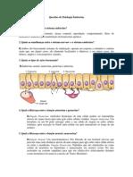 Questões de fisiologia endocrina