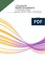 LTE SAE Whitepaper