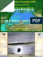 Ecosistemul Marea Neagra
