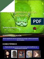 Termorregulación Neonatal Por Gabriel Alcalá-Cerra