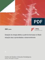 Geração de Energia Elétrica a Partir de Biomassa No Brasil Ctenerg_isaias 02