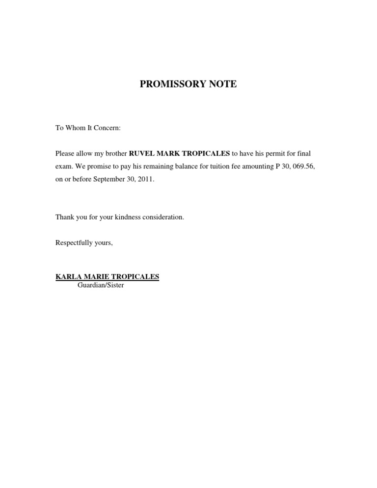 promissory Letter sample – Promisary Note Example