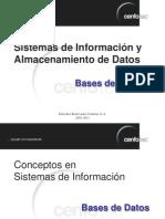 Tema 1 - Sistemas de Información y Almacenamiento de Datos
