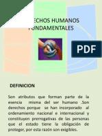 DERECHOS HUMANOS FUNDAMENTALES 1
