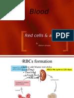 blood anemia&leukemia1