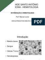 Hemato Sangue Mo Hematopoiese Tronco