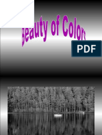Far Ben Spiel Black and White Into COLOR Beautiful