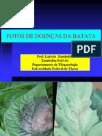 doencas_batata