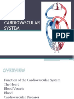 Cardiovascular System[1]