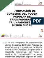 Instructivo Para la Conformación CPTMS