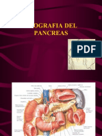 Eco Pancreas