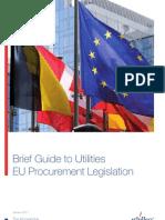 EU Utilities Procurement _2011