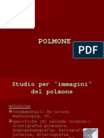 POLMONE 06-07
