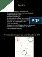 Tecn DNA Recombinante[1]