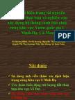 Optimized VQMinh Bao Cao Hoi Thao Rest or Peat 27-2-2009