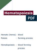 2. Hematopoiesis