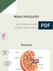 Renal Pathology