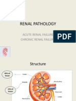 Renal Pathology
