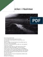 Skräcken i Haukimaa