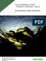 Critique of the Environmental