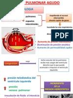 Fisiopatologia Edema Pulmonar Agudo