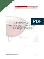 1221925796_curso_de_inicia��o_vinho