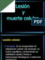 02. Lesión y muerte celular