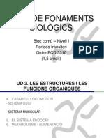 Bloc comú I-Fonaments Biològics-UD2 III (Sistema Muscular)