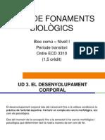 Bloc comú I-Fonaments Biològics-UD3