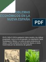 Problemas económicos en la nueva España