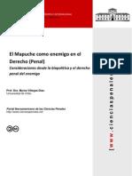 Mapuche Actor Social Enemigo