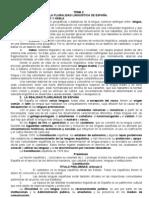 La pluralidad lingüística de España. Curso 2011
