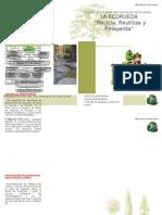 folleto presentacion FAMILIAS