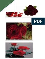 cand trandafirii mor