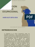 Salud Ocupacional_presentacion