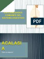 Enfermedades comunes del tubo digestivo