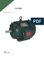 motor IEC