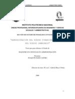 Administración del Riesgo Financiero El Caso del Riesgo Cambiario