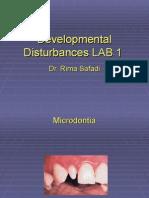 Lab 1 Developmental Disturbances (slide)