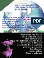 20051003PPT_despertado_oooo