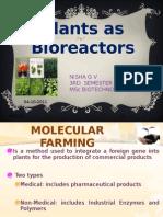 Plants as Bio Reactors Nisha g V