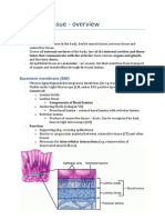 Epithelial Tissue - Overview PDF
