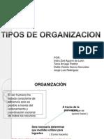 TIPOS DE ORGANIZACION